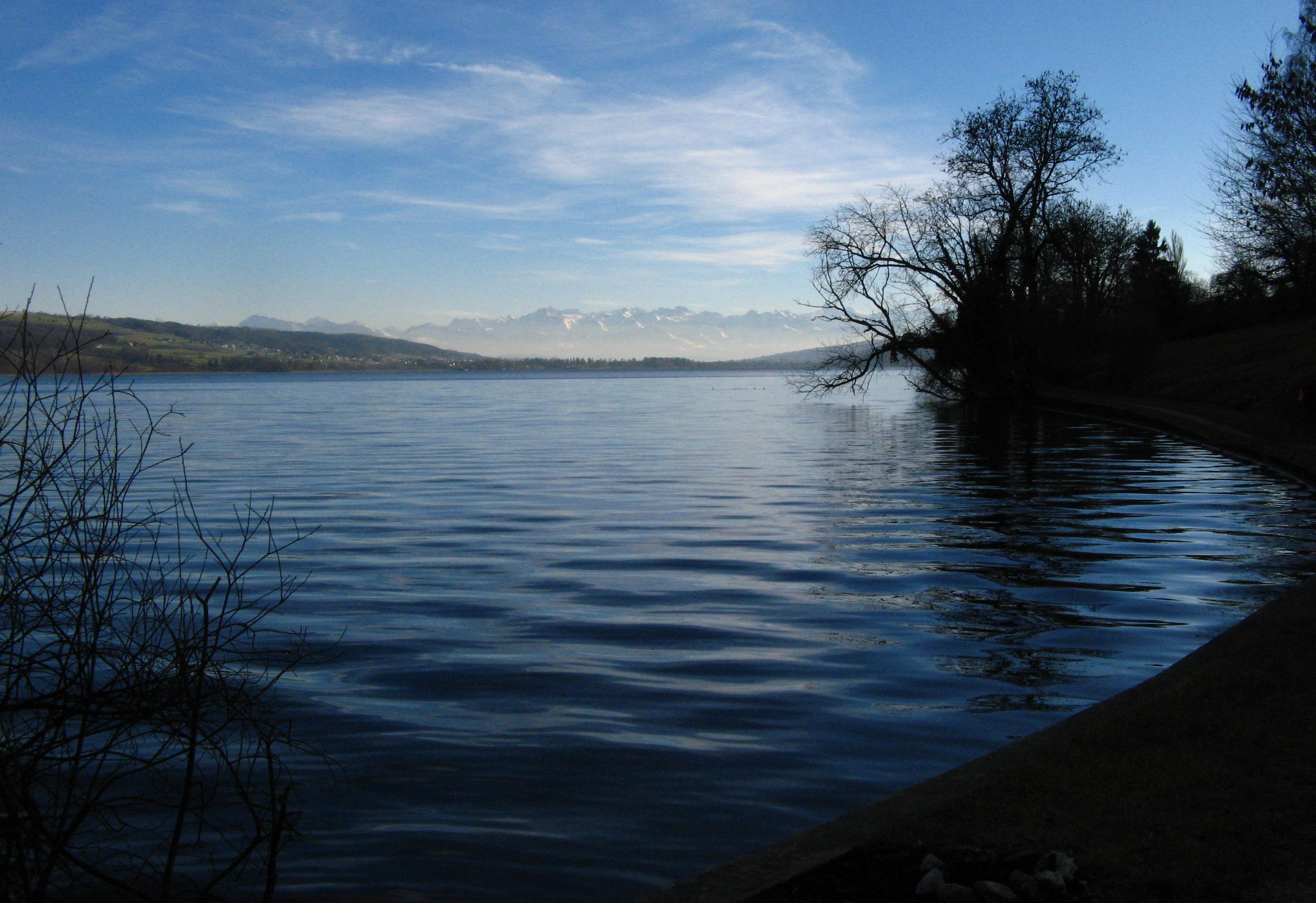 File:1016L Hallwilersee Lake Hallwil.JPG.