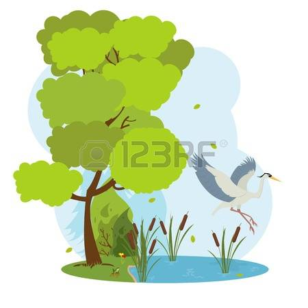 215 Blue Heron Stock Vector Illustration And Royalty Free Blue.