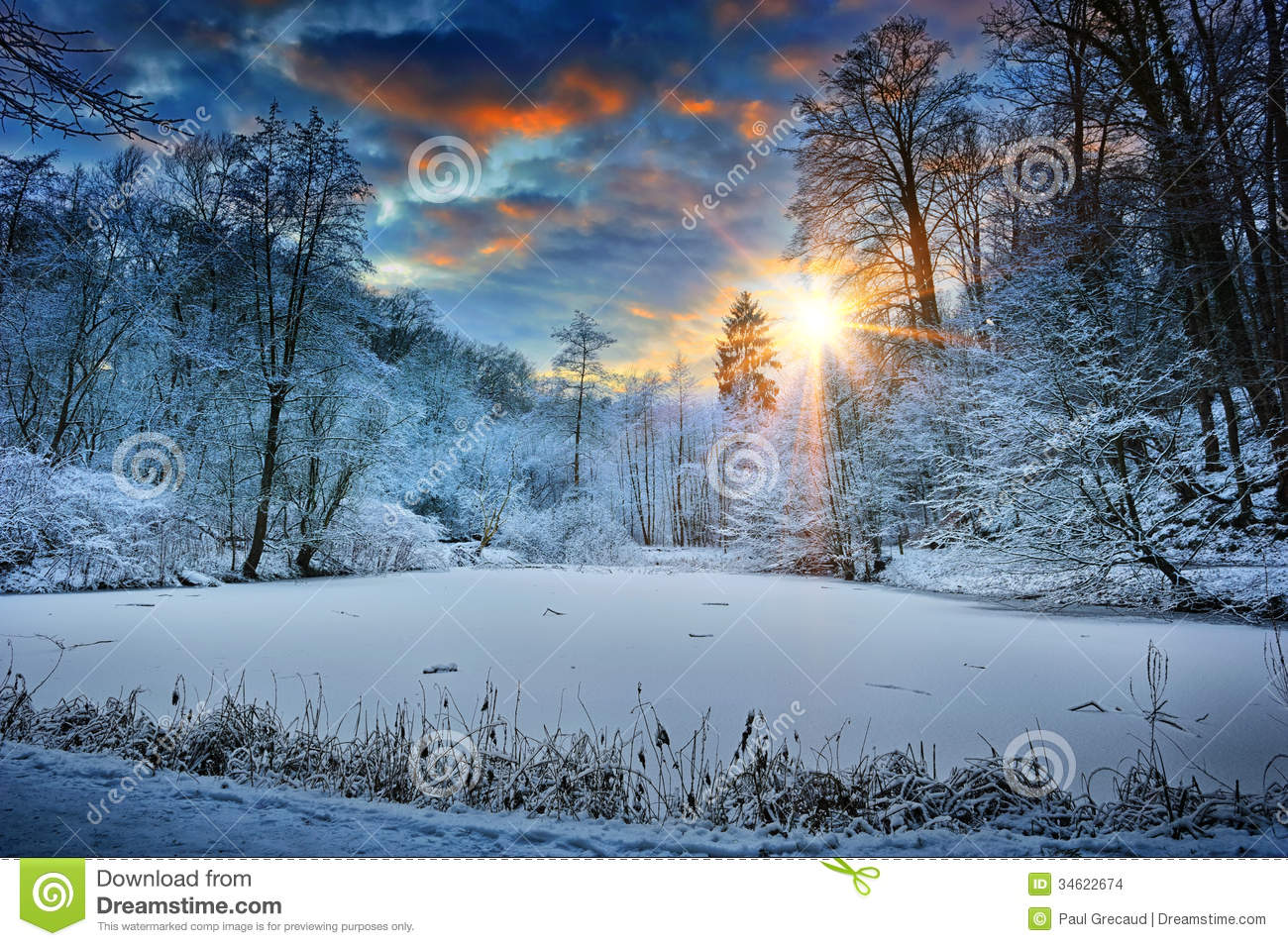 Winter Scene Stock Photos, Images, & Pictures.