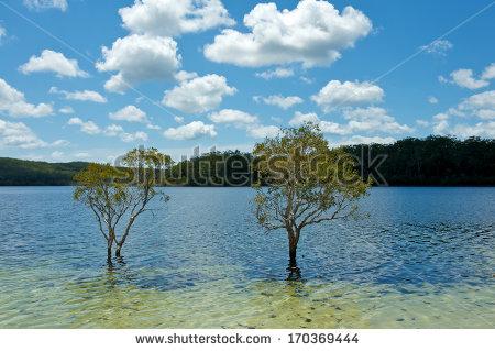 Lake mckenzie clipart #12