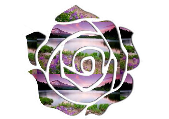 Rose Clipart ~ Jewels Art Creation.