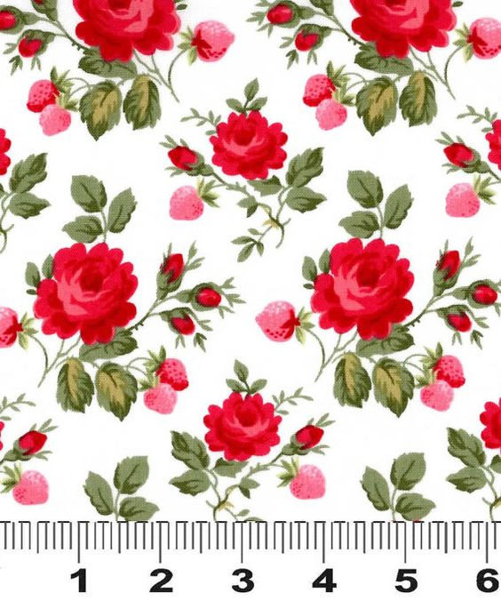Fabric Rosie Two Step Red Pink Design Lakehouse Lake House Dry.