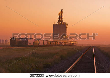 Stock Photo of Grain Rail Hopper Cars Being Loaded At An Inland.