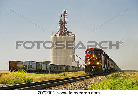 Stock Photography of Train Carrying Grain Rail Hopper Cars Passes.