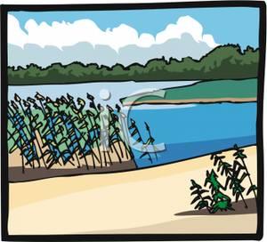 By A Lake Shore.