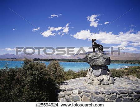 Stock Photo of Statue of a collie dog, Lake Tekapo, South Island.