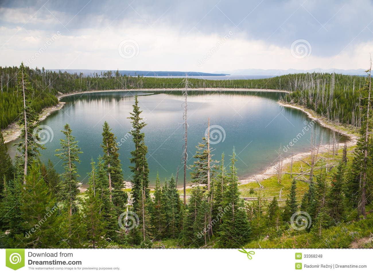 Calm Surface Duck Lake In Yellowstone Forest Royalty Free Stock.