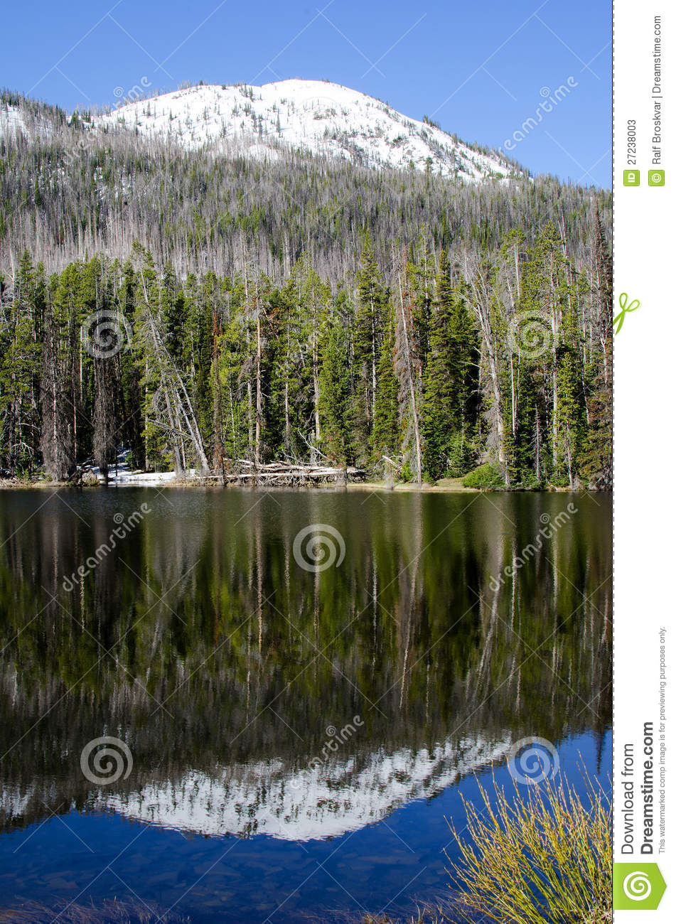 Sylvan Lake, Yellowstone National Park, USA Stock Photos.