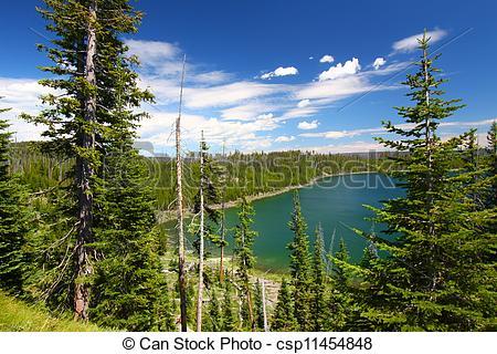Stock Photo of Duck Lake Yellowstone National Park.