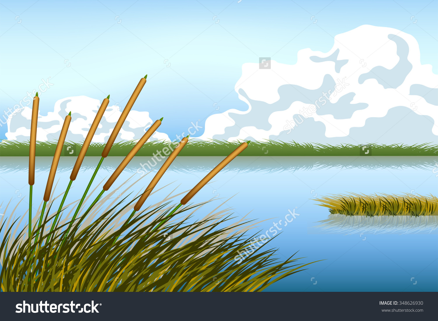 Lake Scape Reed Grass Vector Stock Vector 348626930.