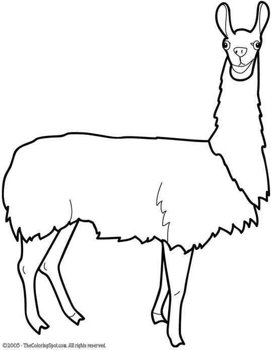 Llama clipart free.