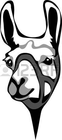721 Alpaca Stock Illustrations, Cliparts And Royalty Free Alpaca.