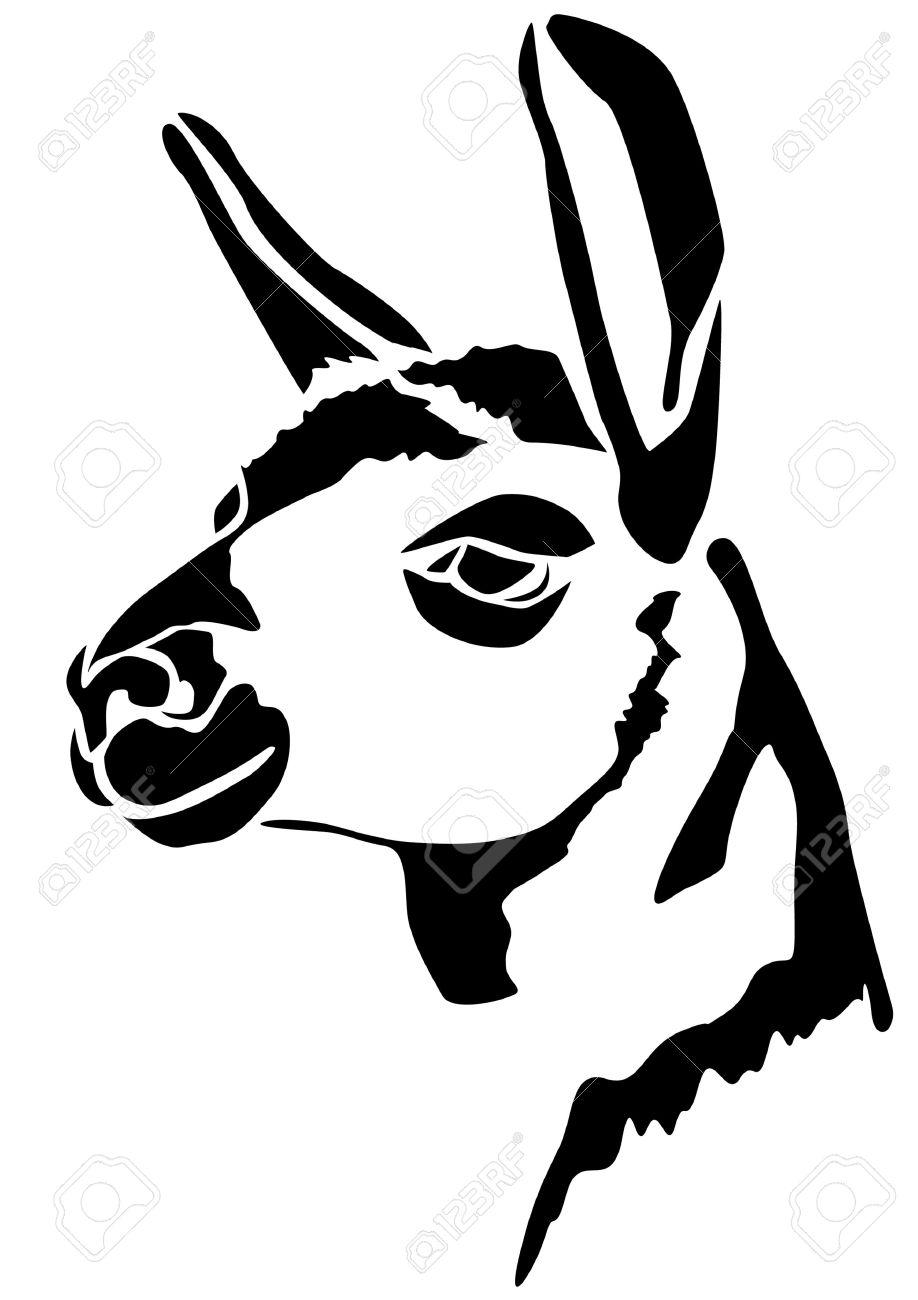 Head Llamas.