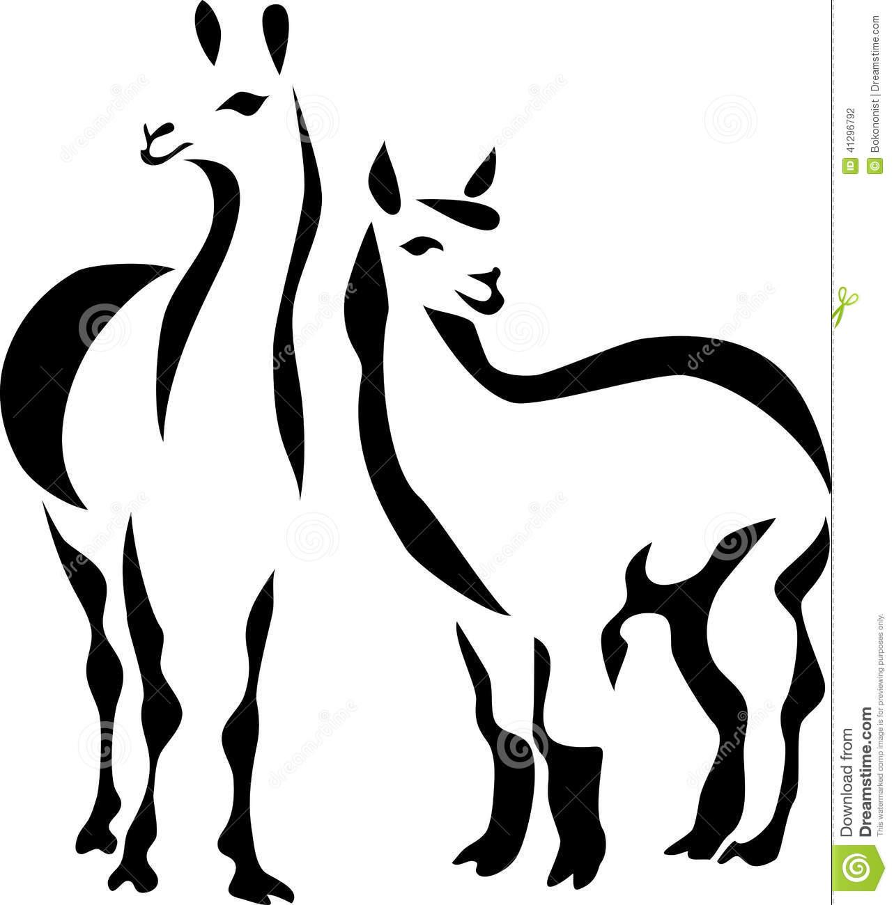 Llama Stock Illustrations.