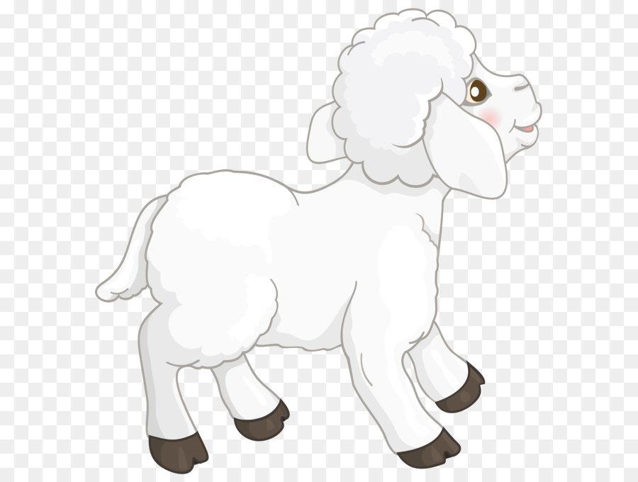 Sheep Goat Clip art.