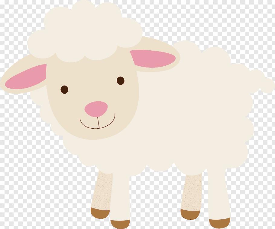 Sheep, Sheep, lamb free png.