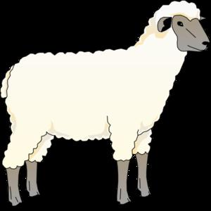 Lamb Clipart Png.