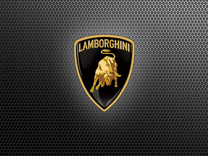 HD wallpaper: car Grill Lamborghini Grill Logo Cars.