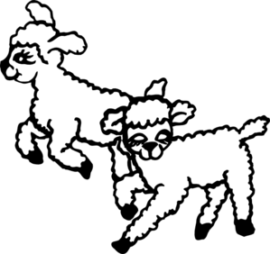Lambs clipart.
