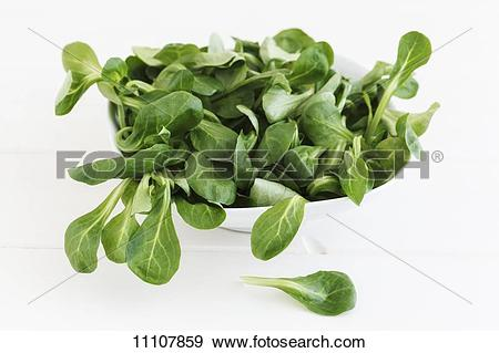 Stock Photograph of A bowl of lamb's lettuce 11107859.