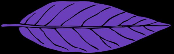 lanceolate leaf 2.