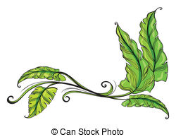 Lanceolate leaves Clip Art and Stock Illustrations. 8 Lanceolate.