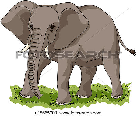 Clip Art of wild animal, vertebrate, lion, land animal, mammal.