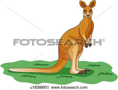 Clipart of wild animal, vertebrate, kangaroo, land animal, mammal.