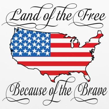 America Patriotic Script Men\'s Ringer T.
