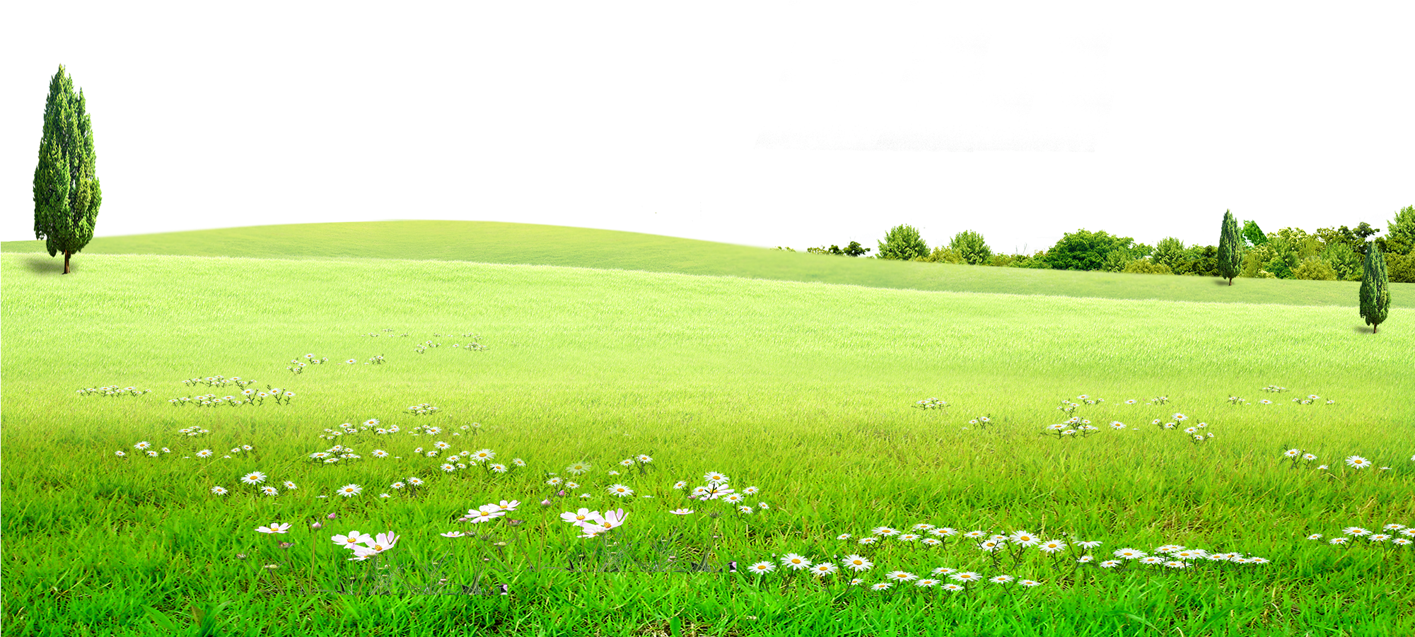 HD Graphic Stock Land Grassland For Free Download On.