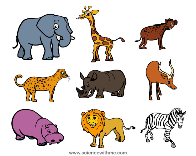Learn about Safari Animals.