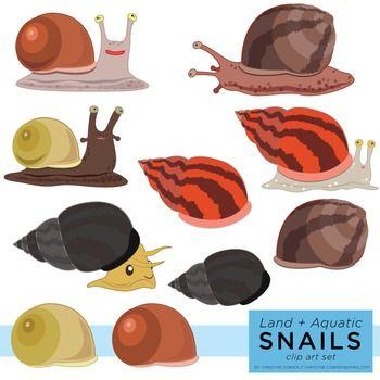 Snails Clip Art Set (Aquatic and Land Snails).