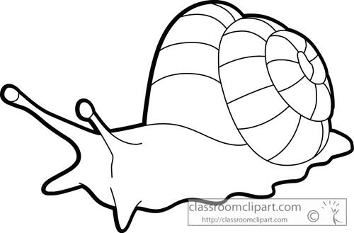 Snail clipart outline.