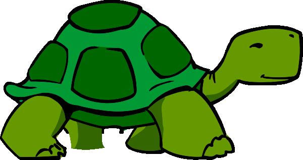 Showing post & media for Fertile turtle cartoon.