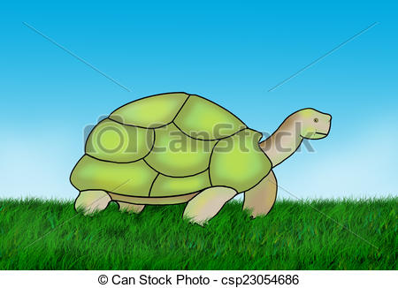 Land turtle Clip Art and Stock Illustrations. 126 Land turtle EPS.