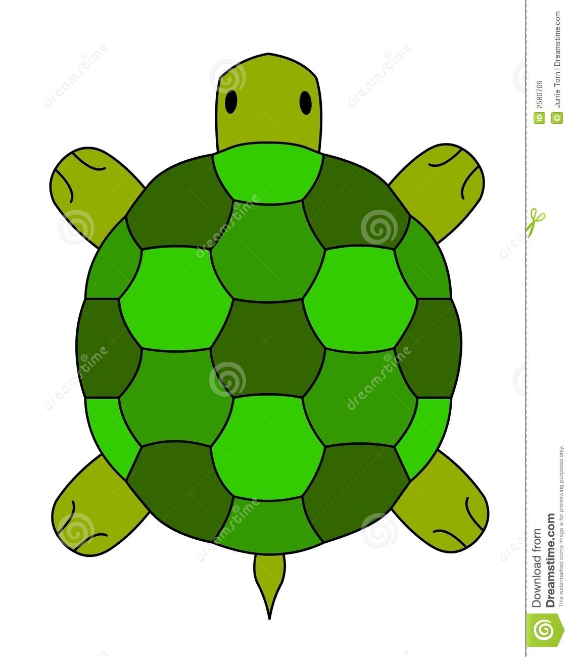 Land Turtle Illustration Royalty Free Stock Images.