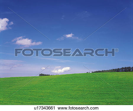Stock Photography of a Flat Green Land Under the Blue Sky, Low.