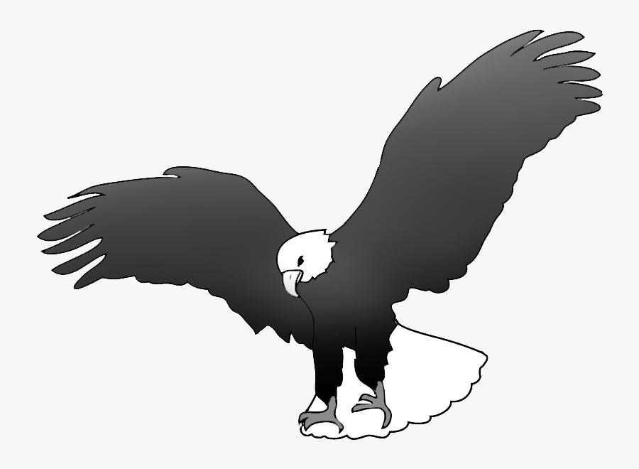 Bald Eagle Landing Drawing.
