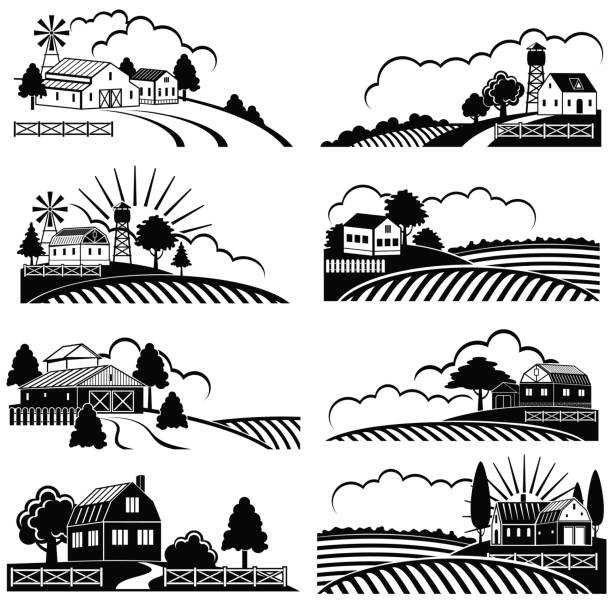 Best Black And White Landscape Illustrations, Royalty.