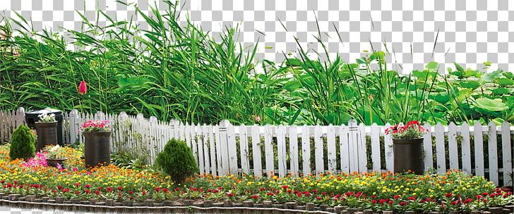 Landscape Garden Plant , Landscape Plants PNG clipart.