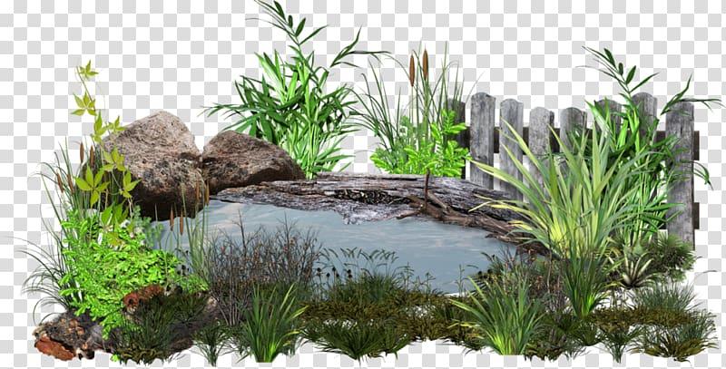 Green leafed plants illustration, Pond Koi Garden , mo he.