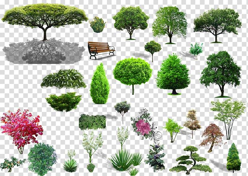 Green tree collage, Tree Shrub Landscape, Plant material.