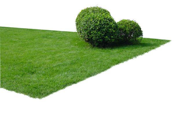 Garden Png Real Estate Garden Green Shru #46462.