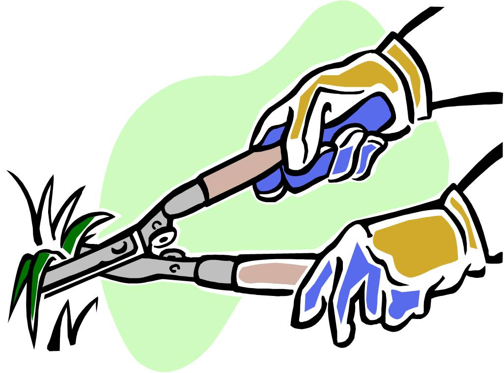 Landscaping Tools Clipart.