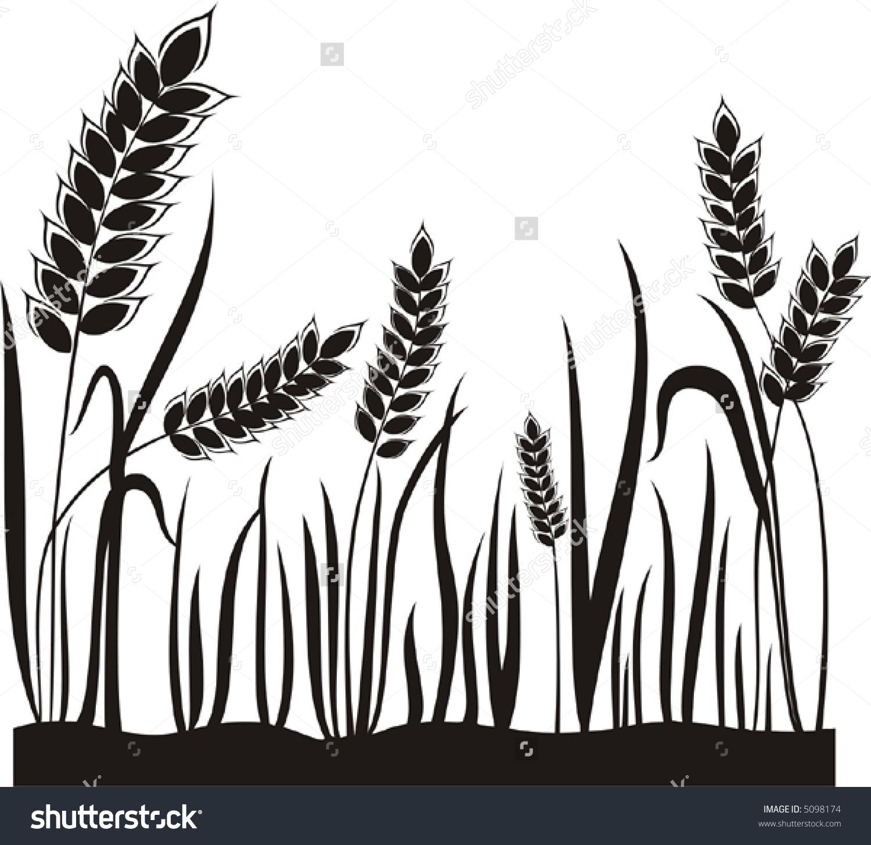 Grain Ears. Stock Vector Illustration 5098174 : Shutterstock.