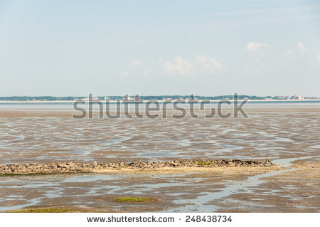 Intertidal Zone Stock Photos, Royalty.