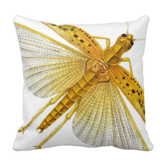 Cicada Insect Pillows.
