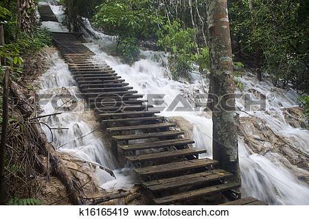 Stock Photograph of Stairs at Tat Kuang Si waterfall in Laos.