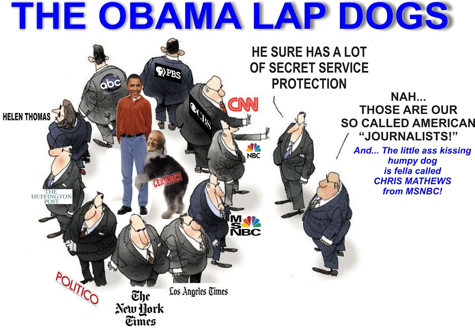 Lapdog media.