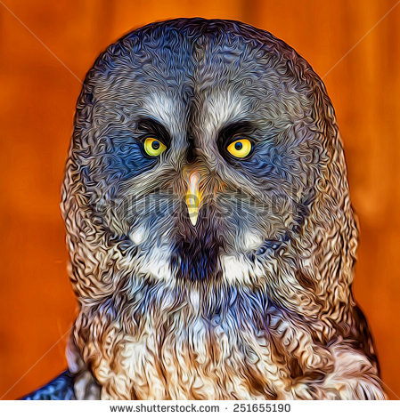 Mottled Owl Stock Photos, Royalty.
